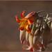 Flor de una suculenta (cotyledon orbiculata) (13-06-2010)