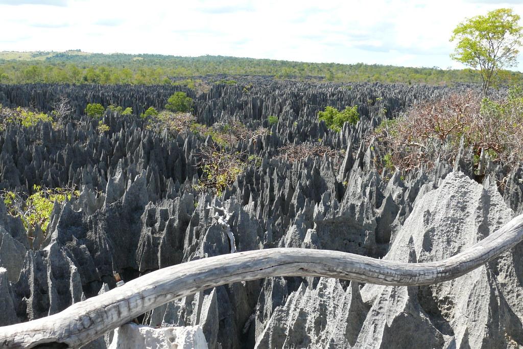 Tsingy de Bemaraha (nationaal park)