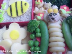 Bee and Butterfly Bento