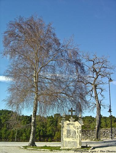 Lapa - Portugal