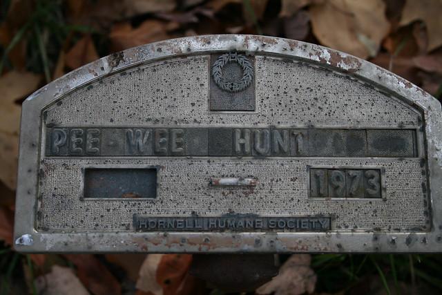 Pee Wee Hunt Coney Island Washboardcapitol Records No