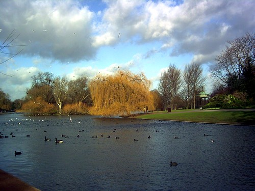 regents park,winter early morning