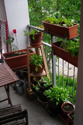 My garden I