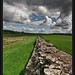 Hadrian's Wall by Peter Ireland