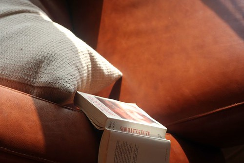 ingredients: novel, chair, pillow, sunlight