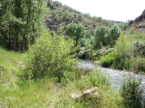Río Salado - Guadalajara