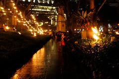 Singapore Arts Festival Opening: A Fire Garden Installation