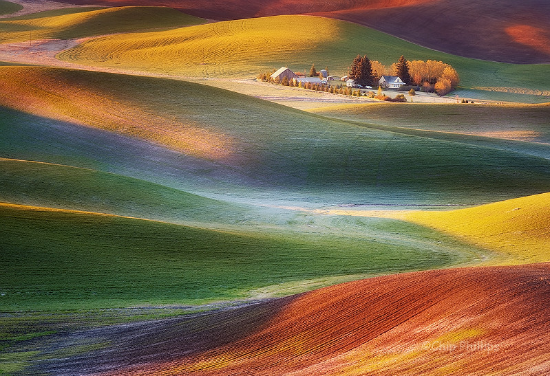 Frosty Morning-Palouse