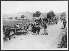 Refugees on the road back