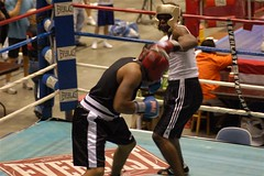 striking combat sports, boxing ring, professional boxing, sport venue, individual sports, contact sport, sports, combat sport, sanshou, punch, amateur boxing, boxing,