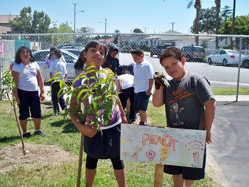 Planting is fun!