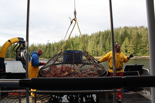 Bering Sea Crab Fishermen