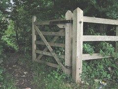 outdoor structure(0.0), home fencing(0.0), bridge(0.0), fence(1.0), split rail fence(1.0), gate(1.0),
