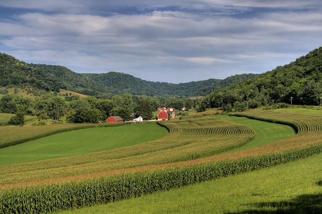 Farming Wisconsin Style