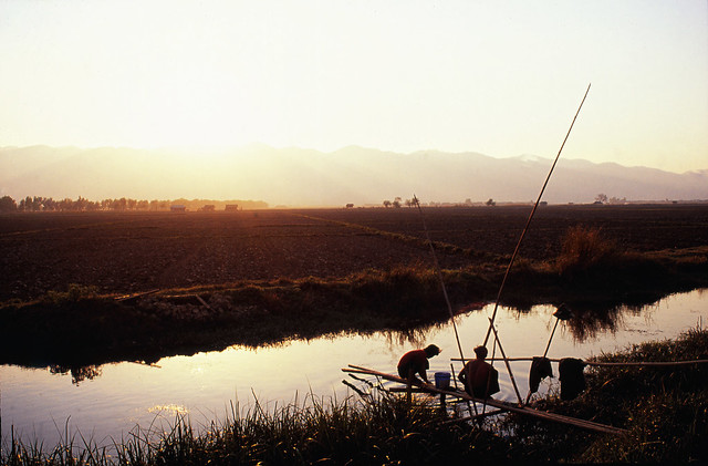 Fishing Near Lake Inle, Burma