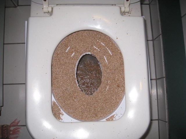 Cat Toilet Training Litter Box