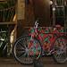 bicicleta vermelha by gabriella.pacheco