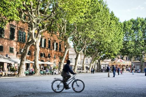 Piazza Napoleone- Lucca, Italy