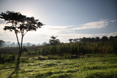 uganda2010