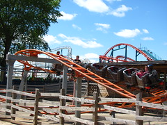 Flamingo Land 201