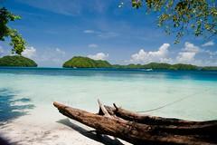 Buceo en Palau