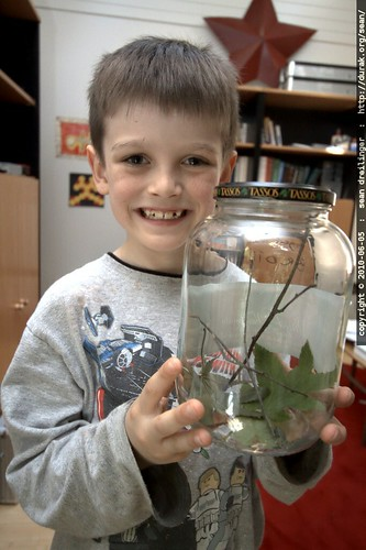 nick and his caterpillar habitat