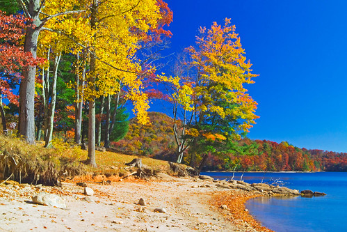 autumn fall water day fallcolor northcarolina bluesky clear elmerfudd lakeglenville thorpereservoir pinecreekroad