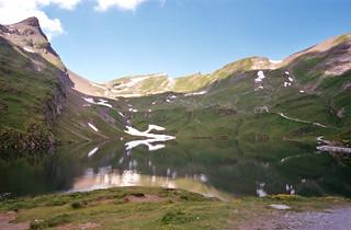Grindelwald (8)
