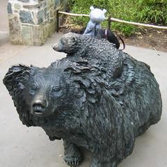 Hippo Sloth Bears