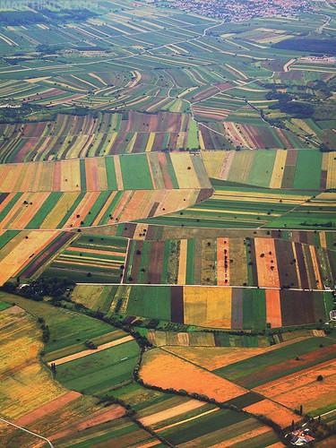 Agricultural Patchwork