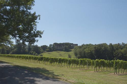 Gironde 17.jpg