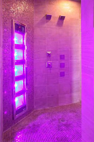 Level  Tanning Bed
