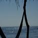20071221 262 Playa La Bocana-Marquelia por Mario Carrasco Jimenez