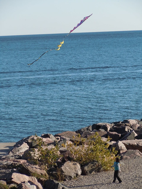 kid girl playing lake ontario toronto canada kite flying