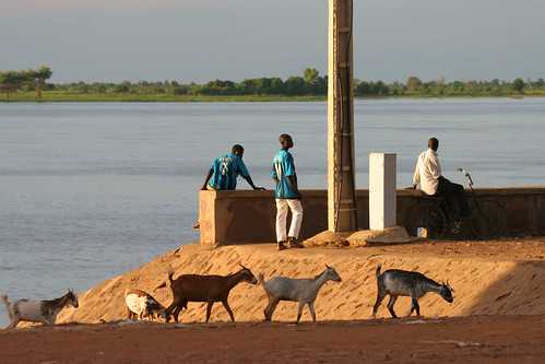 Fishermen and goats at the Niger River