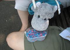 Sherbet Hippo