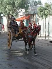 pack animal(0.0), carriage(0.0), vehicle(1.0), coachman(1.0), horse harness(1.0), horse and buggy(1.0), cart(1.0),