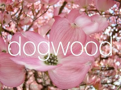 Spring Weddings Dogwood