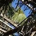20071221 271 Playa La Bocana-Marquelia por Mario Carrasco Jimenez