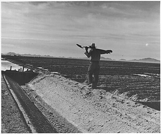 Eloy District, Pinal County, Arizona. Mexican irrigator on duty preparing field for flax cultivation., 11/1940