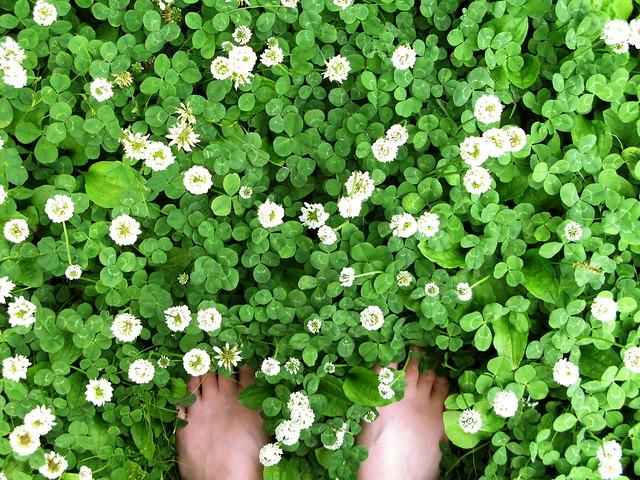 feel green! :)