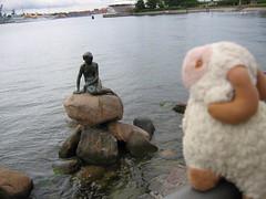 Looking at the Little Mermaid - Youssouf in Copenhagen, Denmark - 16 August 2007