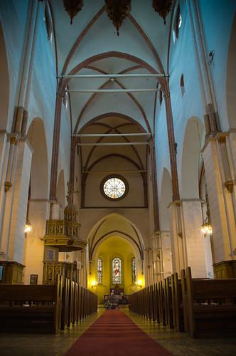 riga cathedral - Konstantin Yolshin