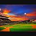 Baseball night DSC_5573 B by Joe Y Jiang