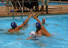water & ball sports, water polo, sports, recreation, outdoor recreation, leisure, team sport, water sport, ball game,