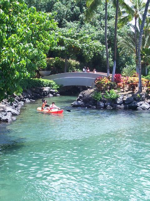 Big Island Kayak Tours Reviews