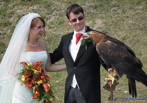 Bride, groom and eagle