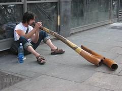 flute(0.0), didgeridoo(1.0), wind instrument(1.0),