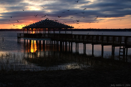 sunset usa water birds landscape dock florida campblanding yourcountry