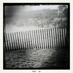 Foggy along the Dunes